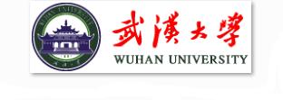 武汉大学信息安全等级保护建设案例