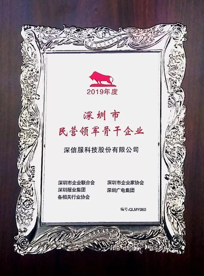 深圳市民营领军骨干企业